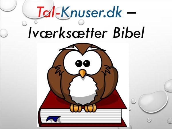 Tal-knuser.dk - Iværksætter - Bibel